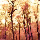 *Watercolor Forest* by DeeZ (D L Honeycutt)