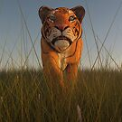 Stalking Tiger by Liam Liberty