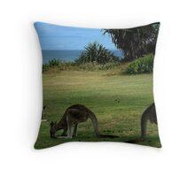 Three Kangaroos in the Yuraygir National Park Throw Pillow