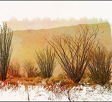 My Painted Desert by CarolM