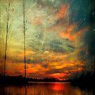 Twilight Bayou by Jonicool