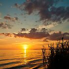 Mississippi Gulf Coast  Sunset Case by Jonicool