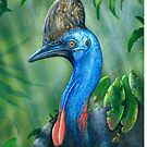 Cassowary by owen  pointon