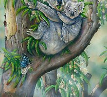 Koala Blue  by owen  pointon