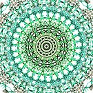 Evergreen Mandala  by Vicki Field