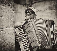 Street accordionist in Havana by Witold Skrzypiński