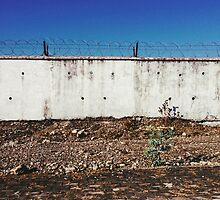 Wall With Barbed Wire by visualspectrum