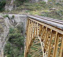 Railway Bridge Over Canyon by rhamm