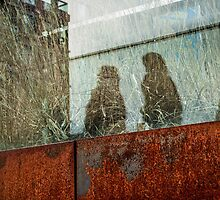 Walking Shadows on High Line by Michel Godts