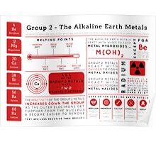 Element Infographics: The Alkaline Earth Metals Poster