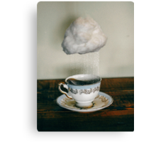 storm in a teacup no. 2 Canvas Print