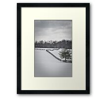 The Color of Winter BW Framed Print