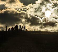 Sunrise on the Farm  by mcstory