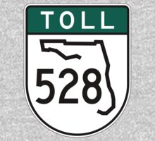 Florida Toll 528 by cadellin