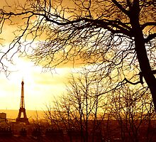 Eiffel tower between trees and rooftops by annegoddard