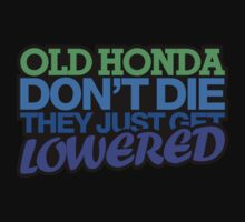Old HONDA don't die they just get lowered - 3 by TheGearbox
