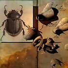 beetle with Omega Swan Nebula by Peter Ciccariello