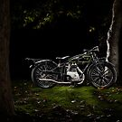 D-Rad R0/4 in the woods by Frank Kletschkus
