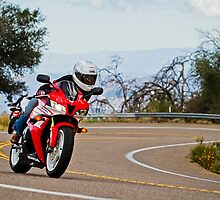 Palomar Moutain Motorcyle Ride by Cbattersby