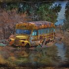 Magic Bus by Michael  Gunterman