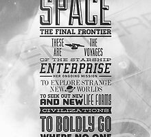 Space the Final Frontier by Danni McGowan