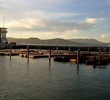 Pier 39  by SpunkyMars