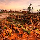 Granite outcrops by Stephen  Nicholson