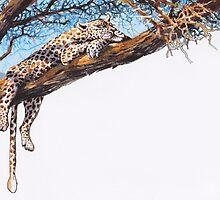 Cool Cheetah by RoseRigden