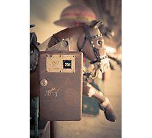 Quarter Horse Photographic Print