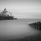 The Pier, Eastbourne by Fern Blacker