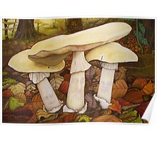 Deathcap Fungus Poster