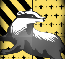 What the HELL is a Hufflepuff? Sticker