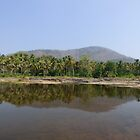 Chalakudy River by solena432