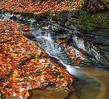 Autumn Brook by Kenneth Keifer