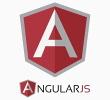 AngularJS ×2 by Angular JS