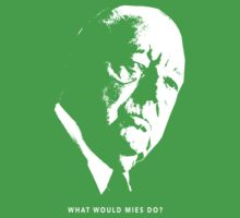 What would Mies do? by pohcsneb