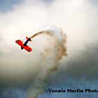Air Show  by Vonnie Murfin