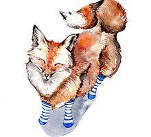 Fox in Socks by Goosi