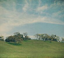 Scattered Across the Hilltop by Laurie Search