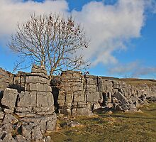 Strip of Limestone Pavement by Kat Simmons