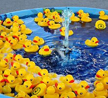 Little Duckies by WildestArt