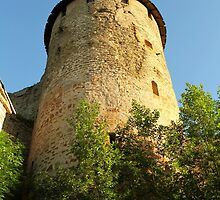 Tower Ivangorod fortress by mrivserg