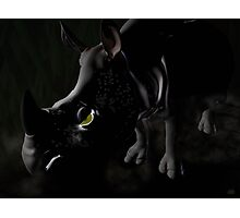 Rhino in the dark with green eye Photographic Print