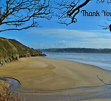 Scott's Bay, Llansteffan - Thank You Card by Paula J James