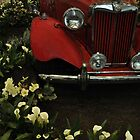 RED MG Vintage Garden by Poete100