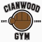 Cianwood Gym - Pokemon Generation II T-Shirt by James Headrick
