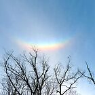 Circumhorizontal Arc by Susan S. Kline