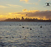San Francisco sunrise by 2Canons