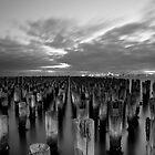 Princes Pier, Melbourne, Australia by paulsborrett