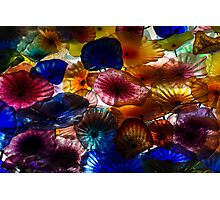 Sea Flowers and Mermaid Gardens - Take 2 - Horizontal Photographic Print